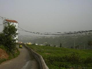 Calima; foto - wikipedia