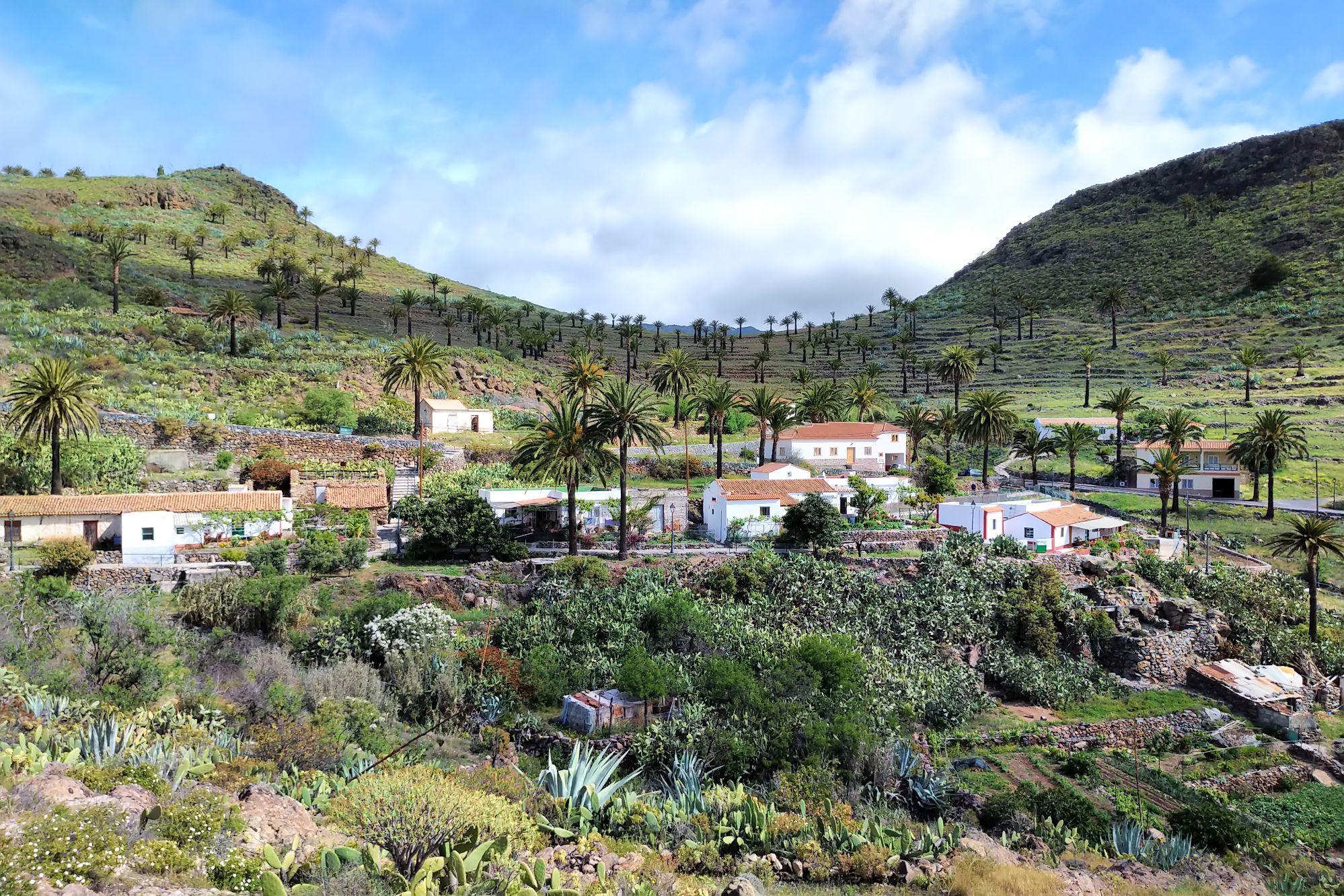 Tagra La Gomera.jpg